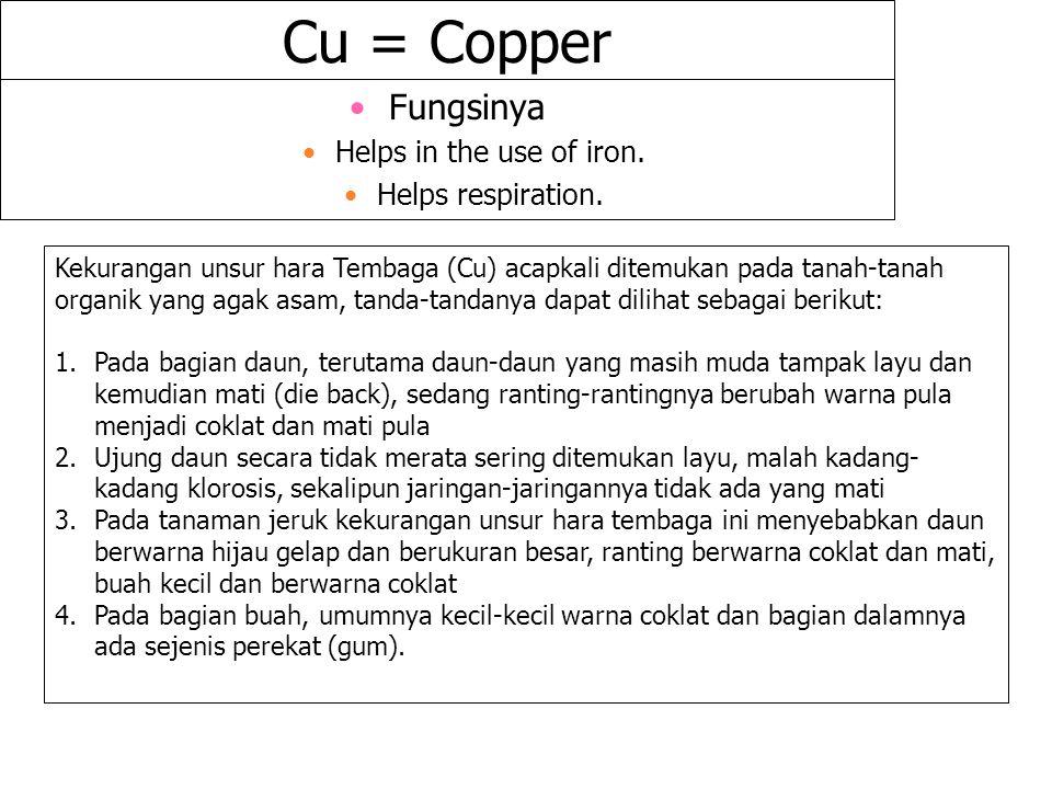 Cu = Copper Fungsinya Helps in the use of iron. Helps respiration. Kekurangan unsur hara Tembaga (Cu) acapkali ditemukan pada tanah-tanah organik yang