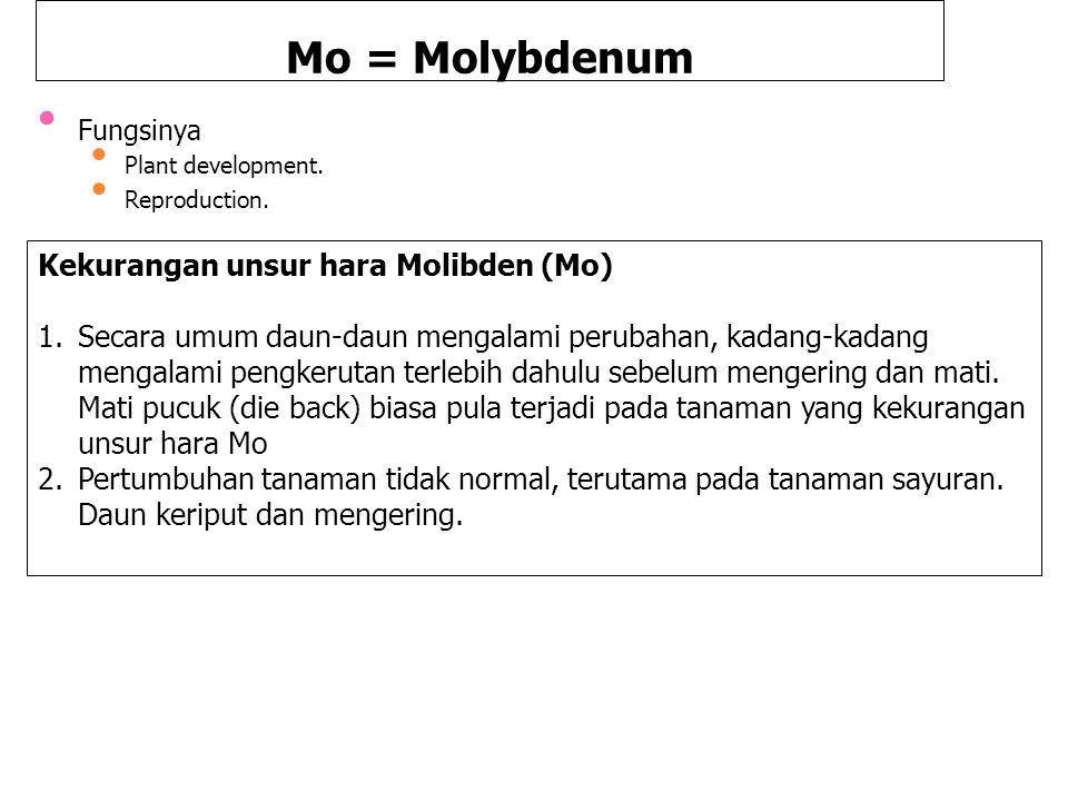 Mo = Molybdenum Fungsinya Plant development. Reproduction. Kekurangan unsur hara Molibden (Mo) 1.Secara umum daun-daun mengalami perubahan, kadang-kad