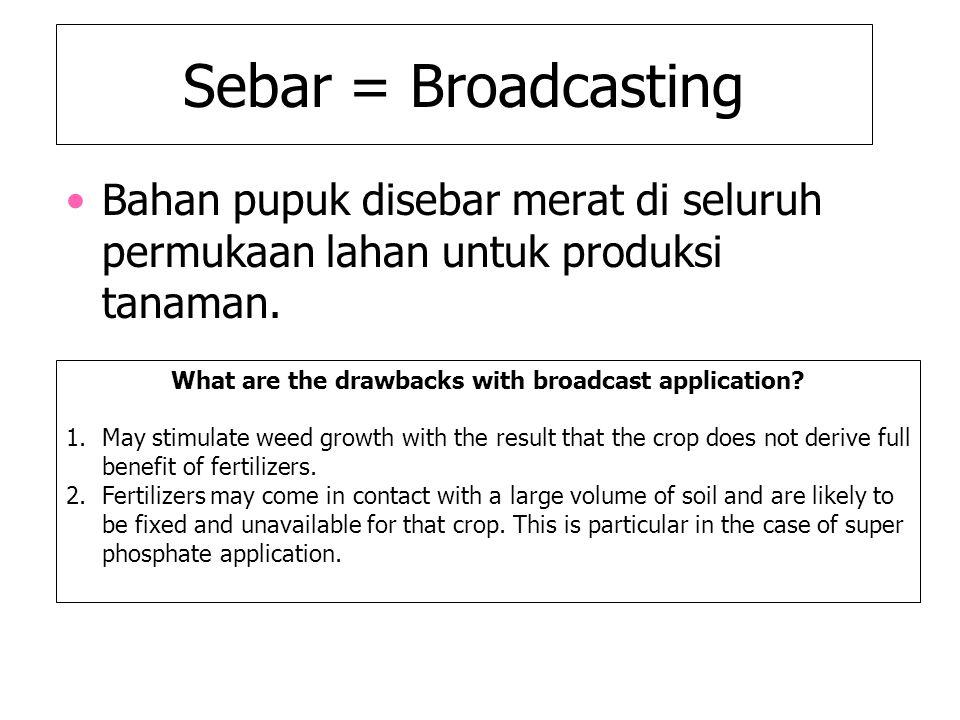 Sebar = Broadcasting Bahan pupuk disebar merat di seluruh permukaan lahan untuk produksi tanaman. What are the drawbacks with broadcast application? 1