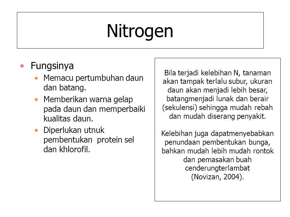 Nitrogen Fungsinya Memacu pertumbuhan daun dan batang. Memberikan warna gelap pada daun dan memperbaiki kualitas daun. Diperlukan utnuk pembentukan pr