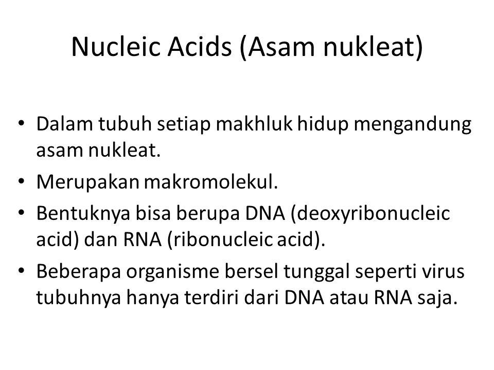 Nucleic Acids (Asam nukleat) Dalam tubuh setiap makhluk hidup mengandung asam nukleat.