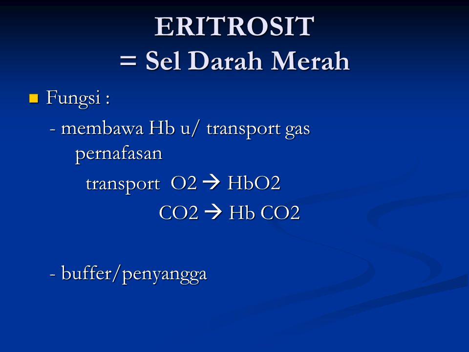 ERITROSIT = Sel Darah Merah Fungsi : Fungsi : - membawa Hb u/ transport gas pernafasan - membawa Hb u/ transport gas pernafasan transport O2  HbO2 transport O2  HbO2 CO2  Hb CO2 CO2  Hb CO2 - buffer/penyangga - buffer/penyangga