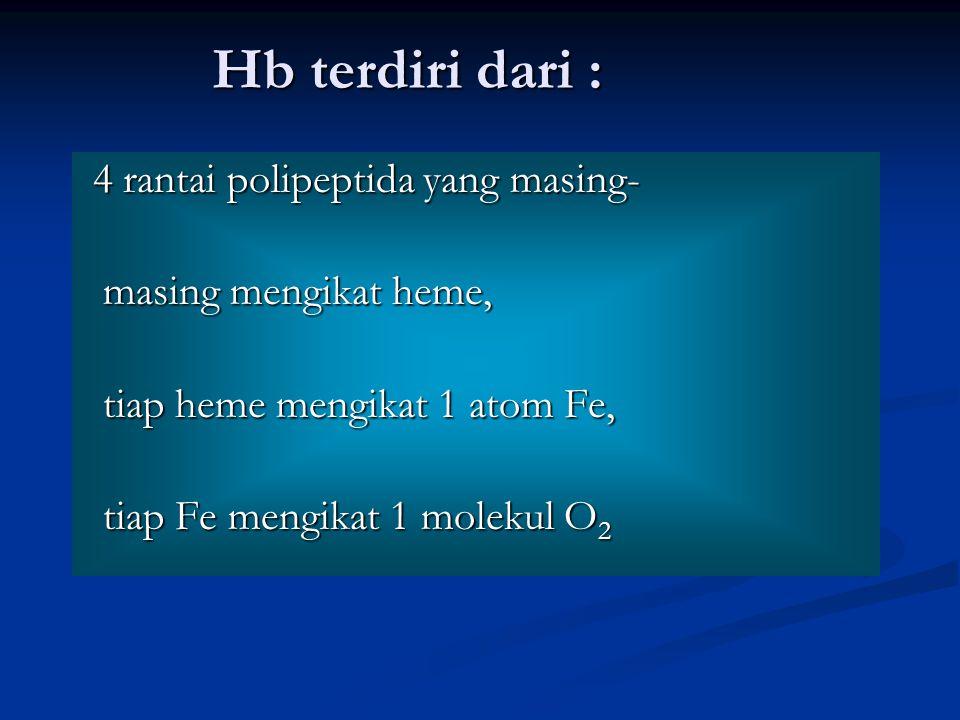 Hb terdiri dari : 4 rantai polipeptida yang masing- 4 rantai polipeptida yang masing- masing mengikat heme, masing mengikat heme, tiap heme mengikat 1 atom Fe, tiap heme mengikat 1 atom Fe, tiap Fe mengikat 1 molekul O 2 tiap Fe mengikat 1 molekul O 2