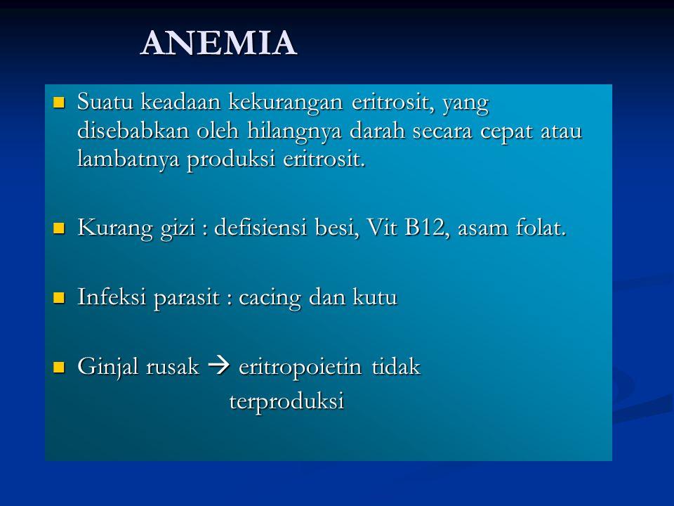 ANEMIA Suatu keadaan kekurangan eritrosit, yang disebabkan oleh hilangnya darah secara cepat atau lambatnya produksi eritrosit. Suatu keadaan kekurang