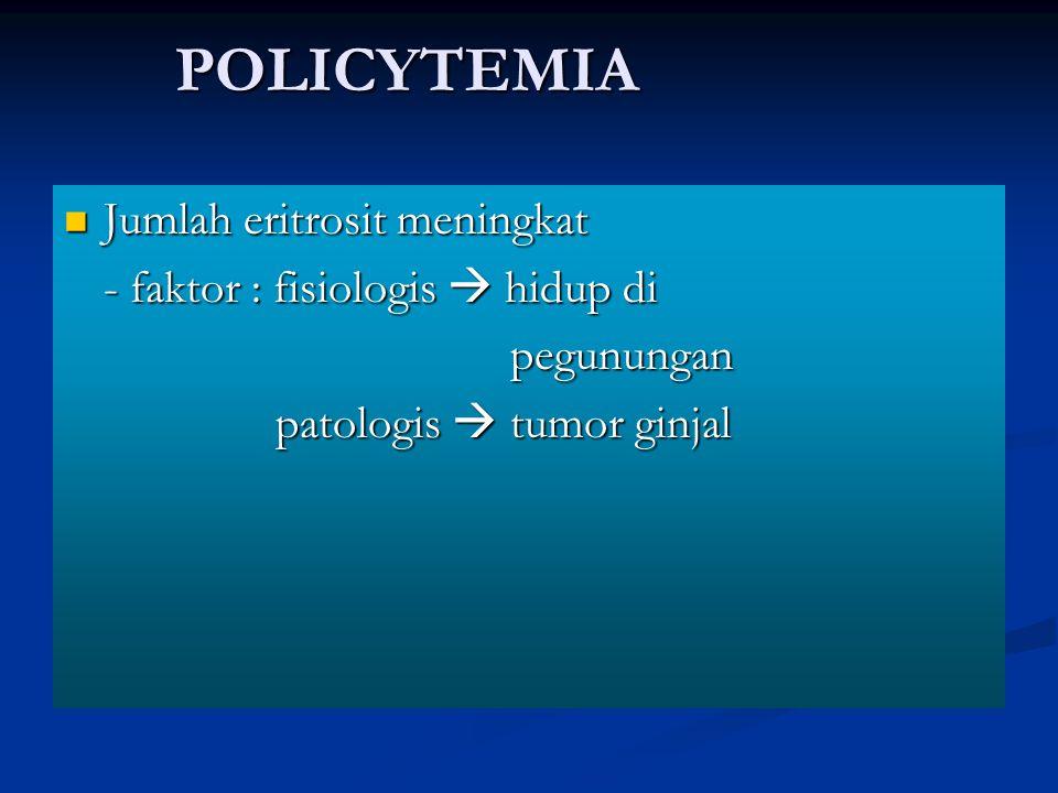 POLICYTEMIA Jumlah eritrosit meningkat Jumlah eritrosit meningkat - faktor : fisiologis  hidup di pegunungan pegunungan patologis  tumor ginjal pato