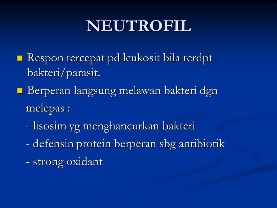 NEUTROFIL Respon tercepat pd leukosit bila terdpt bakteri/parasit. Respon tercepat pd leukosit bila terdpt bakteri/parasit. Berperan langsung melawan