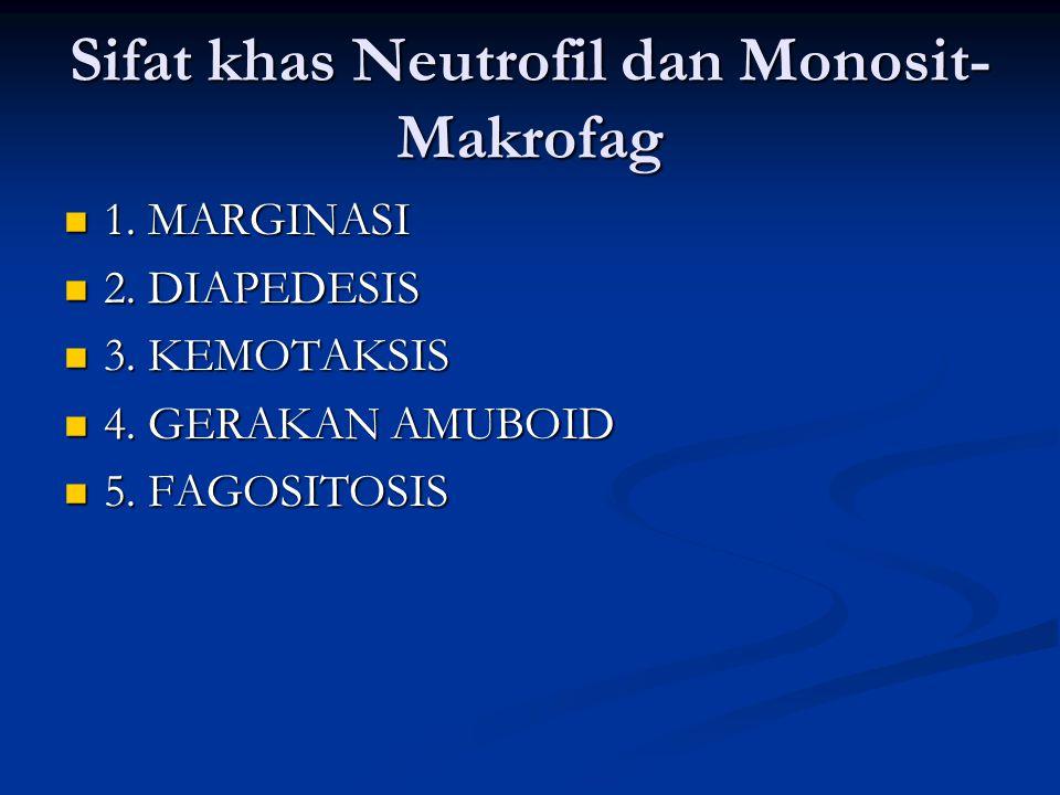 Sifat khas Neutrofil dan Monosit- Makrofag 1. MARGINASI 1. MARGINASI 2. DIAPEDESIS 2. DIAPEDESIS 3. KEMOTAKSIS 3. KEMOTAKSIS 4. GERAKAN AMUBOID 4. GER