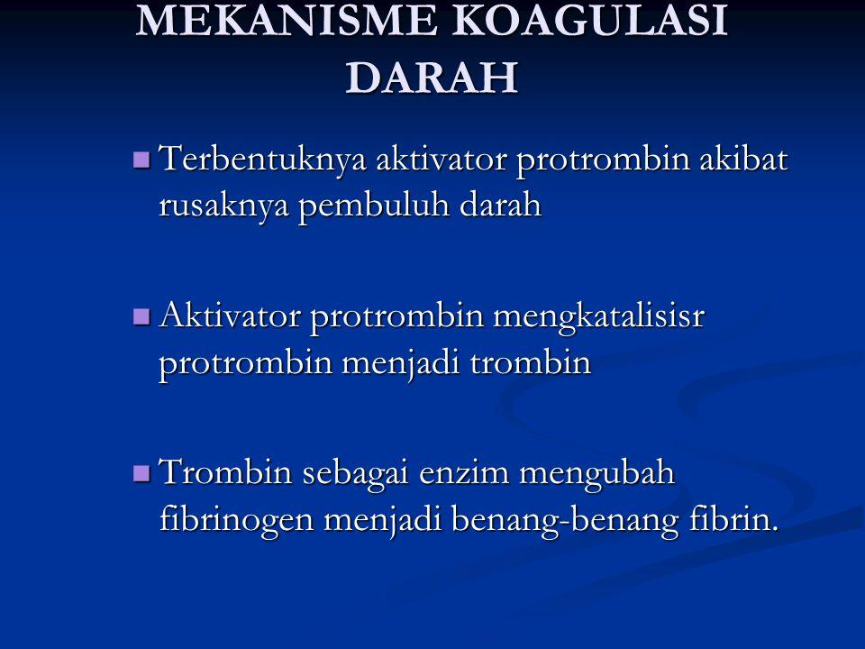 MEKANISME KOAGULASI DARAH Terbentuknya aktivator protrombin akibat rusaknya pembuluh darah Terbentuknya aktivator protrombin akibat rusaknya pembuluh darah Aktivator protrombin mengkatalisisr protrombin menjadi trombin Aktivator protrombin mengkatalisisr protrombin menjadi trombin Trombin sebagai enzim mengubah fibrinogen menjadi benang-benang fibrin.