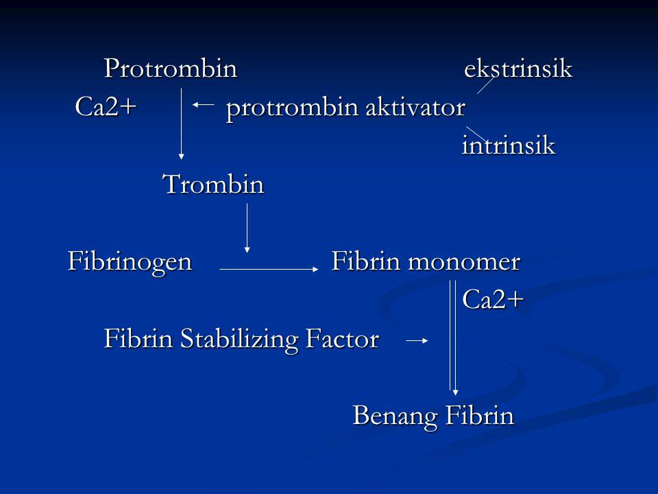 Protrombin ekstrinsik Protrombin ekstrinsik Ca2+ protrombin aktivator Ca2+ protrombin aktivator intrinsik intrinsik Trombin Trombin Fibrinogen Fibrin