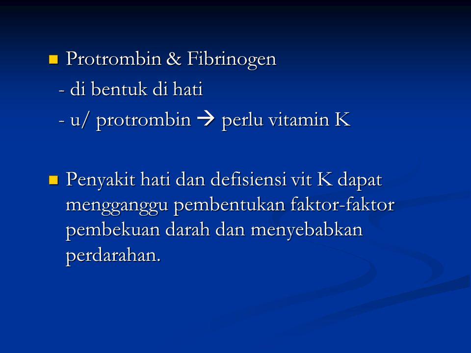 Protrombin & Fibrinogen Protrombin & Fibrinogen - di bentuk di hati - di bentuk di hati - u/ protrombin  perlu vitamin K - u/ protrombin  perlu vita