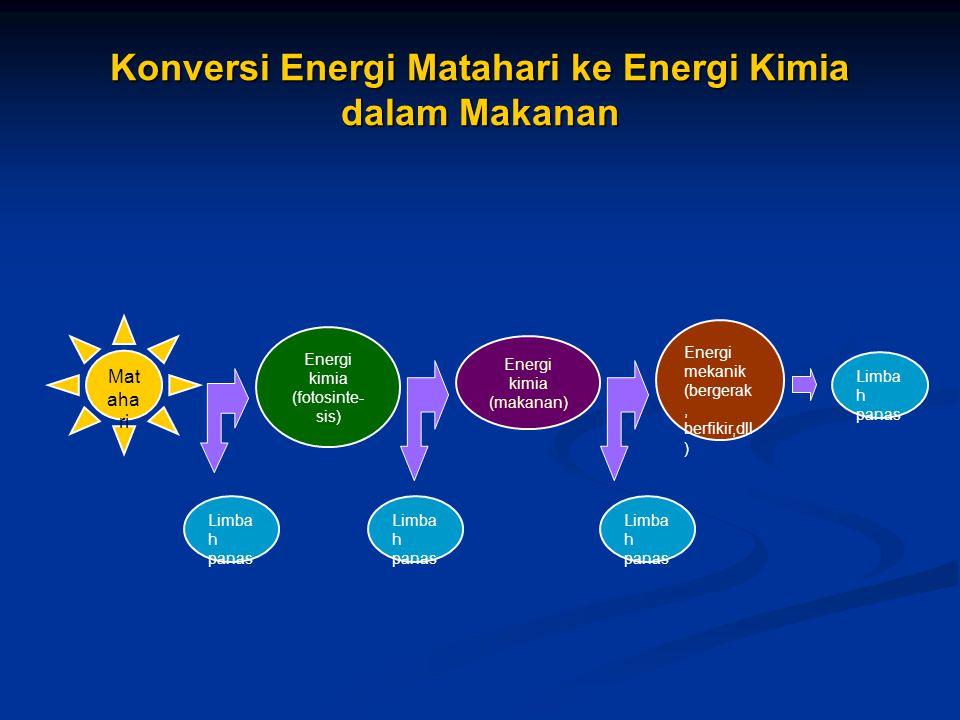 Materi dapat di recycle(didaur ulang) Materi dapat di recycle(didaur ulang) Energi tidak pernah dapat direcycle Energi tidak pernah dapat direcycle Minyak dan makanan hanya sekali digunakan untuk melakukan usaha Minyak dan makanan hanya sekali digunakan untuk melakukan usaha Energi cenderung berubah secara spontan dari yang terkonsentrasi menjadi yang lebih tidak terkonsentrasi (encer) Energi cenderung berubah secara spontan dari yang terkonsentrasi menjadi yang lebih tidak terkonsentrasi (encer) Energi h-q bersih = Total energi h-q yang tersedia – Energi h-q yang diperlukan untuk menemukan, memperoleh dan memproses energi (hukum I) – Kualitas energi yang hilang dalam menemukan, memperoleh dan memproses energi (hukum II)