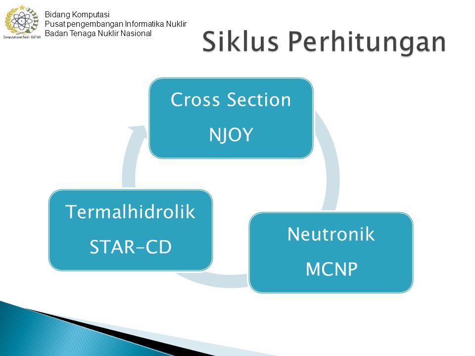 Cross Section NJOY Neutronik MCNP Termalhidrolik STAR-CD Bidang Komputasi Pusat pengembangan Informatika Nuklir Badan Tenaga Nuklir Nasional