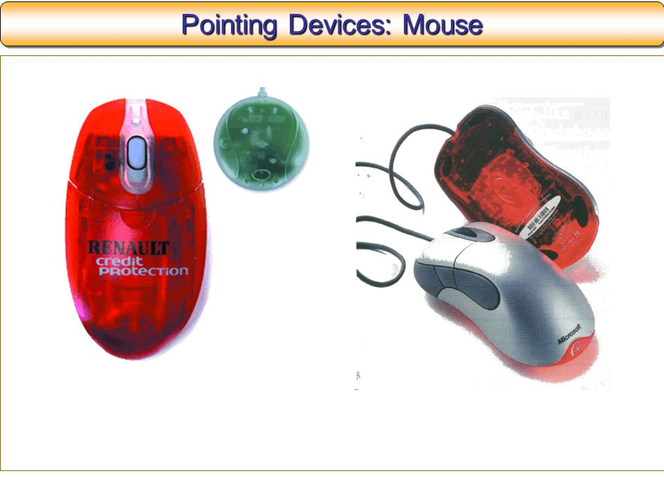 Pointing Devices: Mouse