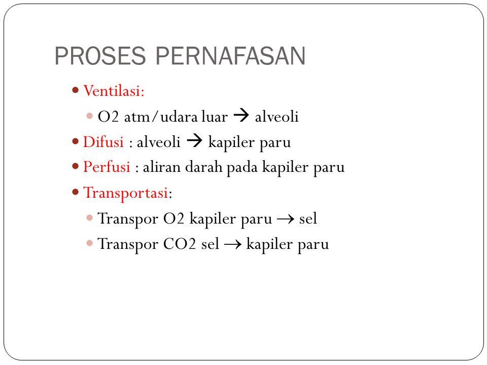 PROSES PERNAFASAN Ventilasi: O2 atm/udara luar  alveoli Difusi : alveoli  kapiler paru Perfusi : aliran darah pada kapiler paru Transportasi: Transp