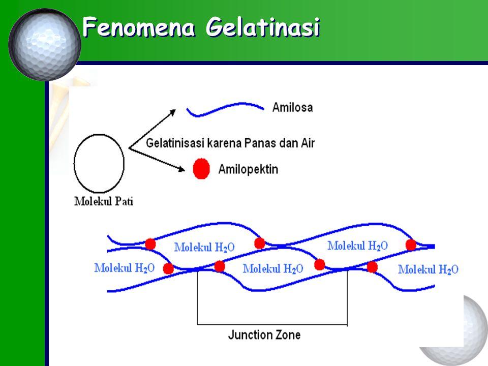 Fenomena Gelatinasi