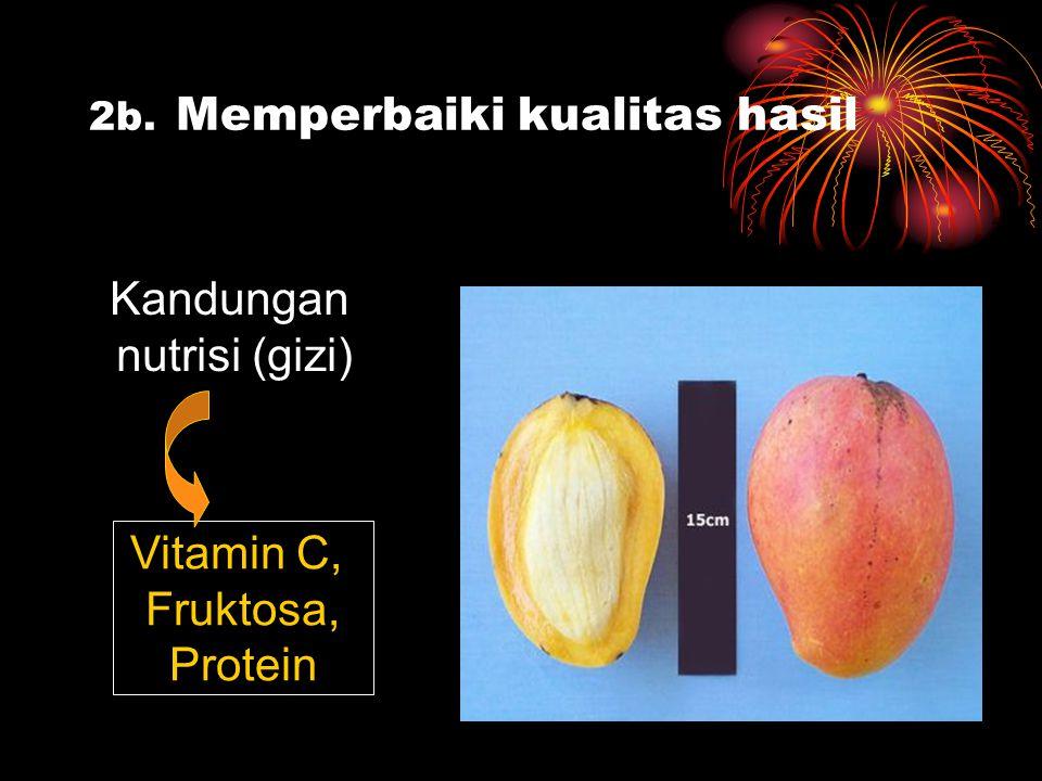 2b. Memperbaiki kualitas hasil Kandungan nutrisi (gizi) Vitamin C, Fruktosa, Protein