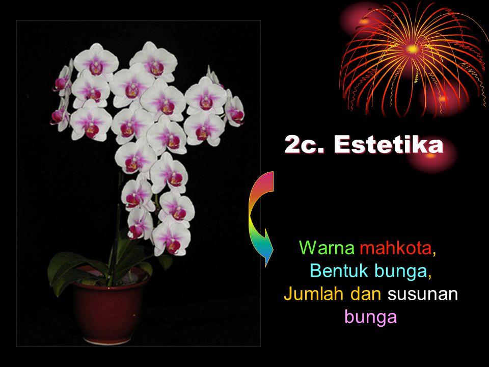 2c. Estetika Warna mahkota, Bentuk bunga, Jumlah dan susunan bunga