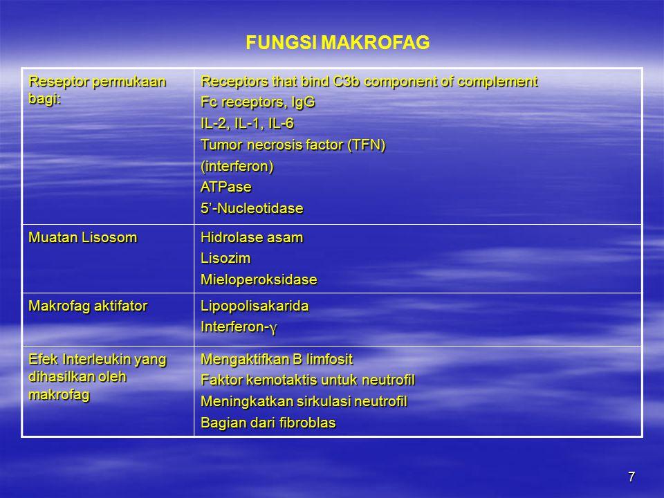8 Menghasilkan Fagosit Sel mati Seluler debris Bakteri Pemaparan Antigen Present antigen with MHC II molecules to helper T lymphocytes (T H cells) IL-1 (a mitogenic protein for T lymohocytes) IL-6, Il-8 TNF- α Interferon- α, -β; involved in fighting virus Colony-stimulating factor (M-CSF) Granulocyte-colony stimulating factor (G-CSF) Granulocyte-macrophage colony-stimulating factor (GM-CSF) Erythropoietin Platelet-derived growth factor (PDGF) FUNGSI MAKROFAG