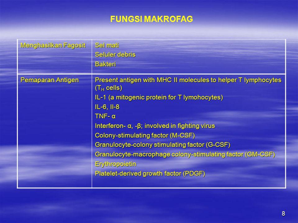9 Menghasilkan sekret khusus Fibroblast growth factor (FGF) Transforming growth factor- β (TGF- β) Protease inhibitors Elastase, collagenase ProstaglandinsLeukotrienes Neutral proteases Coagulation factors (II, VII, IX, X, XII) Thrombospondin Plasminogen activator Factor inducing monocytopoiesis Complement componenets Pyrogens (mediate fever) Proteoglycan-degrading enzymes Hydrogen peroxide LipasesSuperoxide FUNGSI MAKROFAG