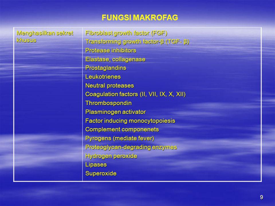 10 NAMA SEL FUNGSITEMPAT Macrophage Fagositosis, antigen presentation Loose (areolar) connective tissue Peritoneal or pleural macrophages Fagositosis Serous cavities Macrophage Blood cell destruction, antigen presentation Bone marrow, spleen, thymus, lymph node Alveolar macrophage (or dust cell) Fagositosis Alveoli of lung Sel Langerhans Antigen presentation Epidermis Sel Kuppfer Fagositosis Liver (perinsinusoidal makrofag) SISTEM MACROPHAGE