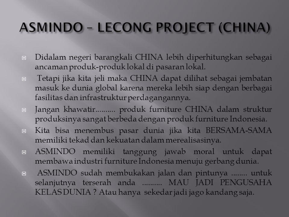 Didalam negeri barangkali CHINA lebih diperhitungkan sebagai ancaman produk-produk lokal di pasaran lokal.  Tetapi jika kita jeli maka CHINA dapat
