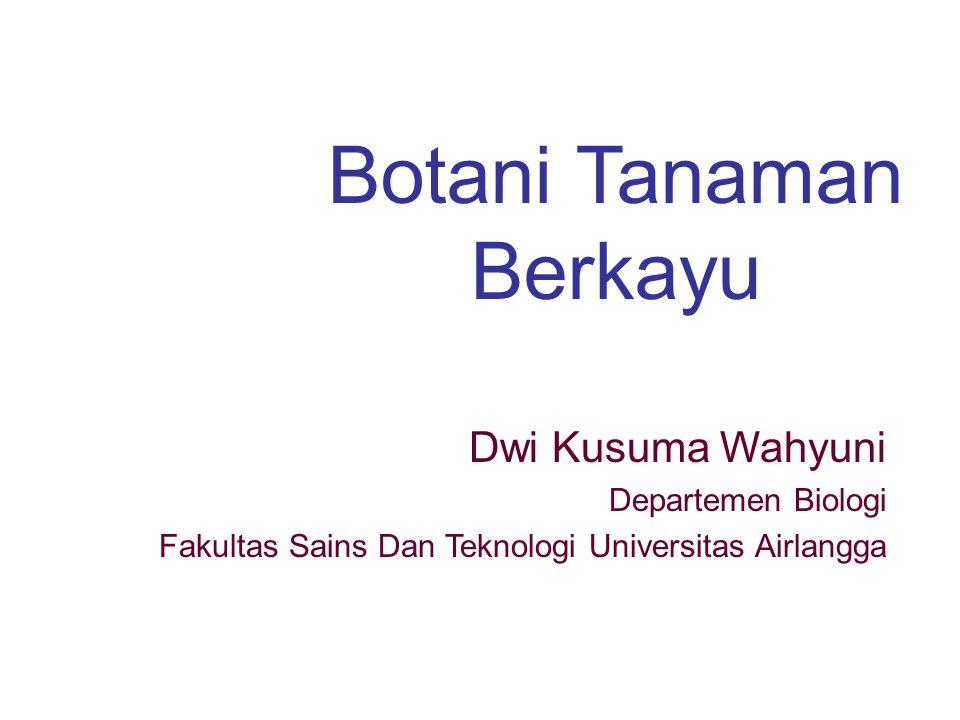 Botani Tanaman Berkayu Dwi Kusuma Wahyuni Departemen Biologi Fakultas Sains Dan Teknologi Universitas Airlangga