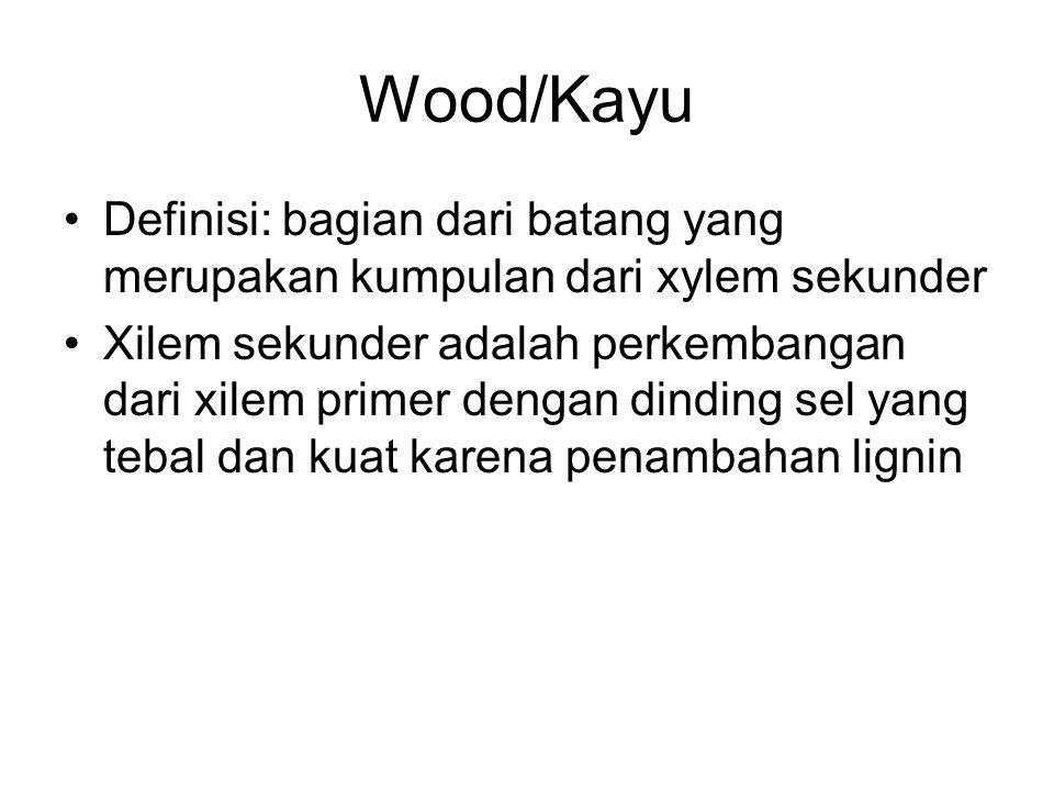 Wood/Kayu Definisi: bagian dari batang yang merupakan kumpulan dari xylem sekunder Xilem sekunder adalah perkembangan dari xilem primer dengan dinding