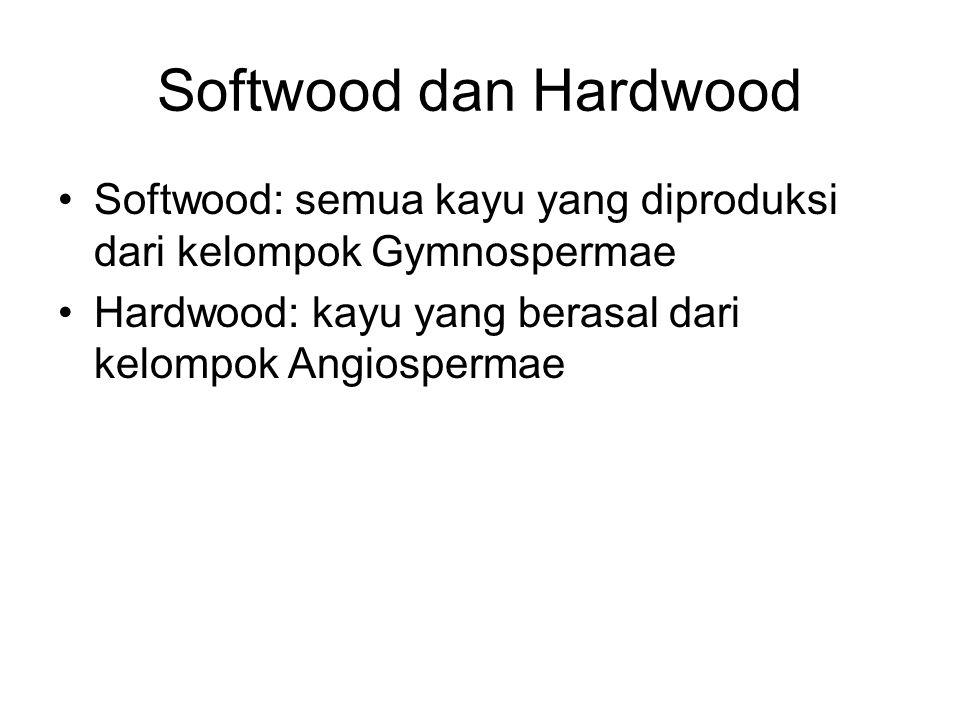 Softwood dan Hardwood Softwood: semua kayu yang diproduksi dari kelompok Gymnospermae Hardwood: kayu yang berasal dari kelompok Angiospermae