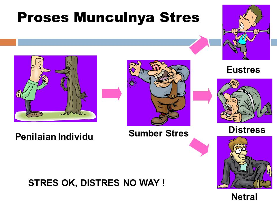 Sumber Stres Penilaian Individu Eustres Distress Netral Proses Munculnya Stres STRES OK, DISTRES NO WAY !