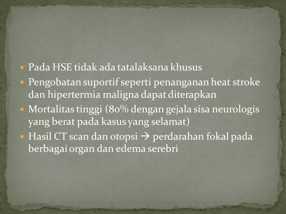 Pada HSE tidak ada tatalaksana khusus Pengobatan suportif seperti penanganan heat stroke dan hipertermia maligna dapat diterapkan Mortalitas tinggi (8