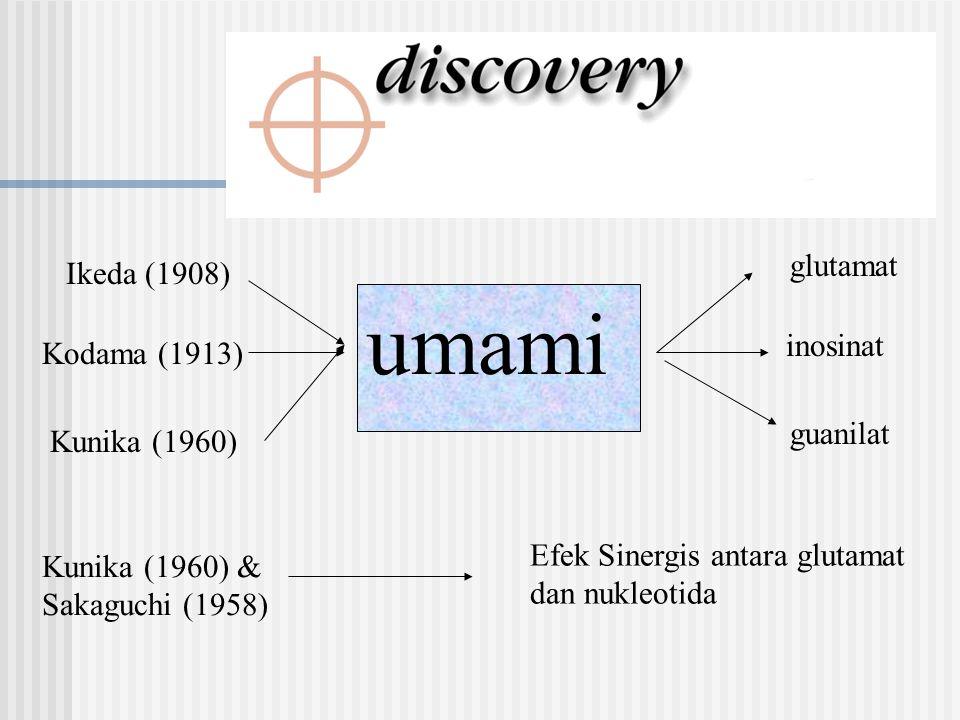 Ikeda (1908) glutamat Kodama (1913) umami inosinat Kunika (1960) guanilat Kunika (1960) & Sakaguchi (1958) Efek Sinergis antara glutamat dan nukleotid