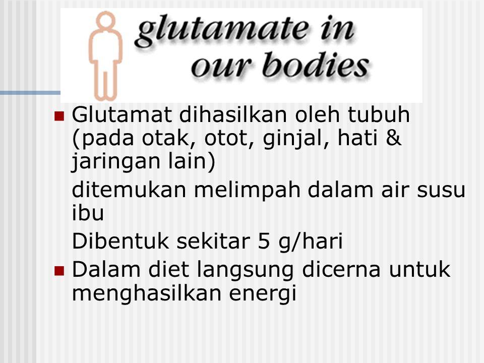 Glutamat dihasilkan oleh tubuh (pada otak, otot, ginjal, hati & jaringan lain) ditemukan melimpah dalam air susu ibu Dibentuk sekitar 5 g/hari Dalam d