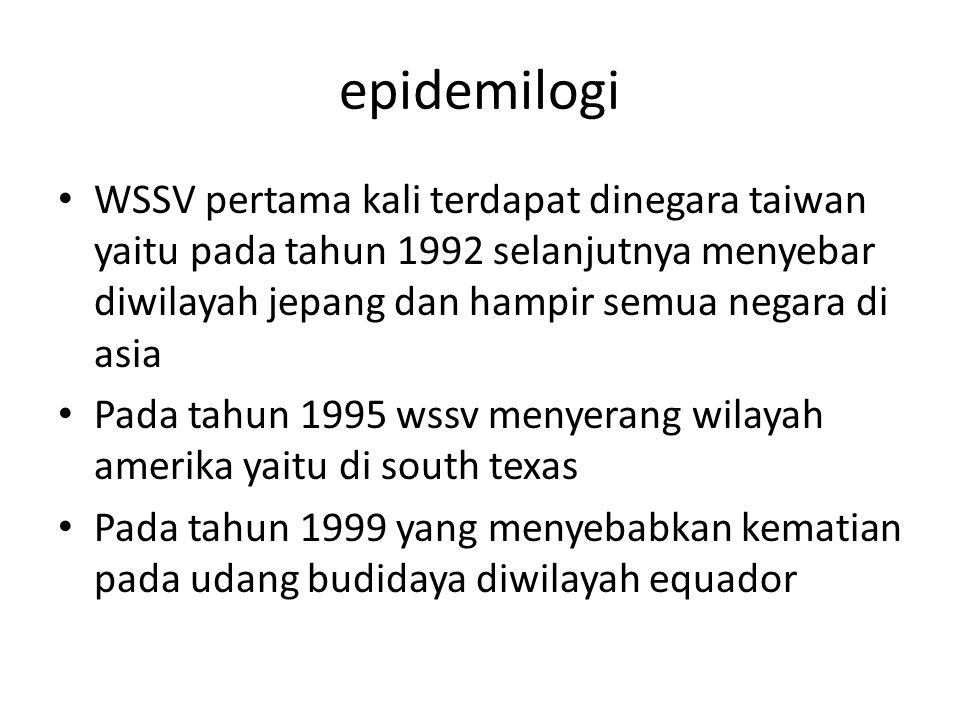 epidemilogi WSSV pertama kali terdapat dinegara taiwan yaitu pada tahun 1992 selanjutnya menyebar diwilayah jepang dan hampir semua negara di asia Pad