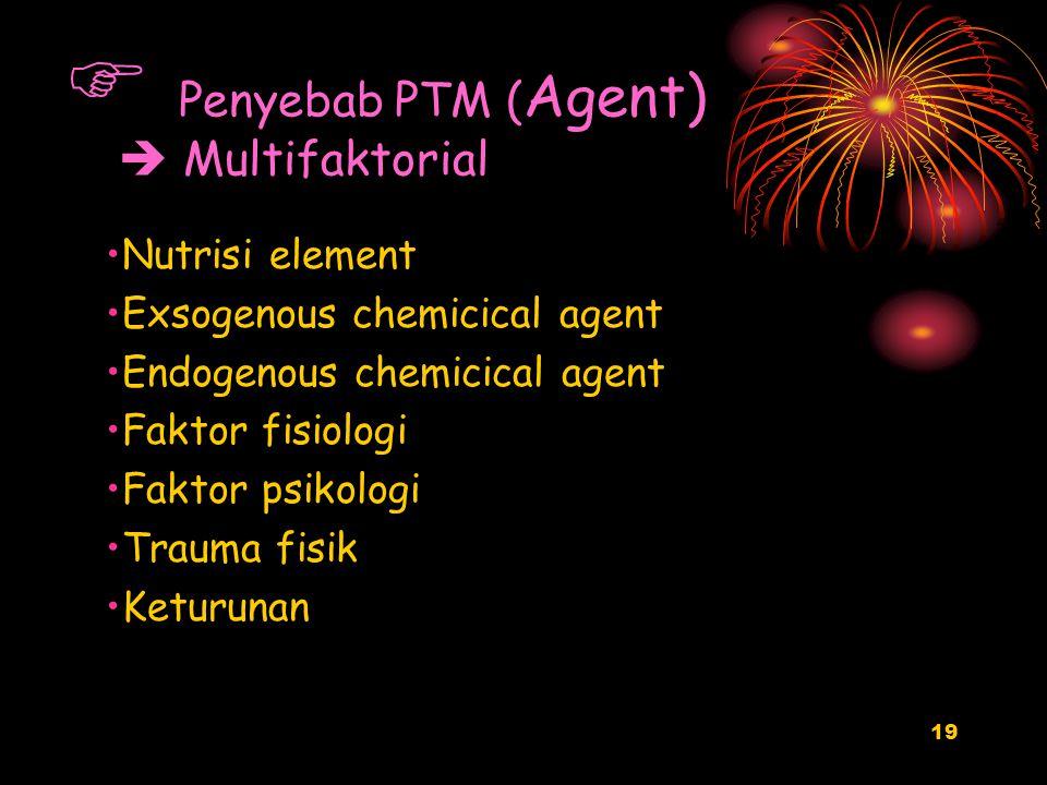 19  Penyebab PTM ( Agent)  Multifaktorial Nutrisi element Exsogenous chemicical agent Endogenous chemicical agent Faktor fisiologi Faktor psikologi