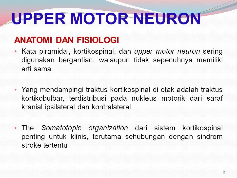 UPPER MOTOR NEURON ANATOMI DAN FISIOLOGI Kata piramidal, kortikospinal, dan upper motor neuron sering digunakan bergantian, walaupun tidak sepenuhnya