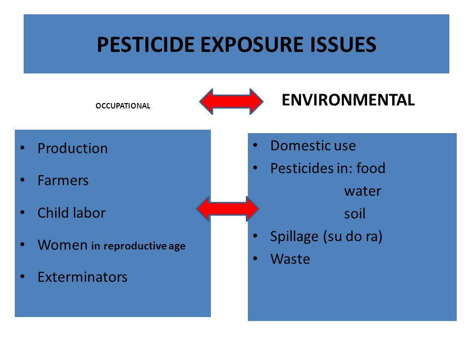 PESTICIDE EXPOSURE ISSUES OCCUPATIONAL Production Farmers Child labor Women in reproductive age Exterminators ENVIRONMENTAL Domestic use Pesticides in