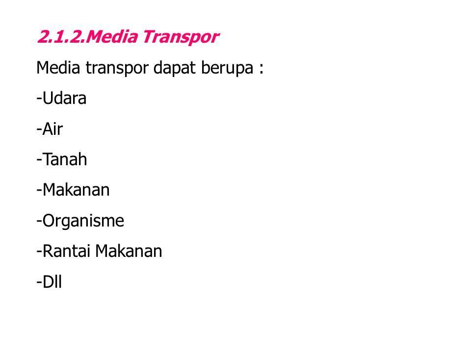 2.1.2.Media Transpor Media transpor dapat berupa : -Udara -Air -Tanah -Makanan -Organisme -Rantai Makanan -Dll