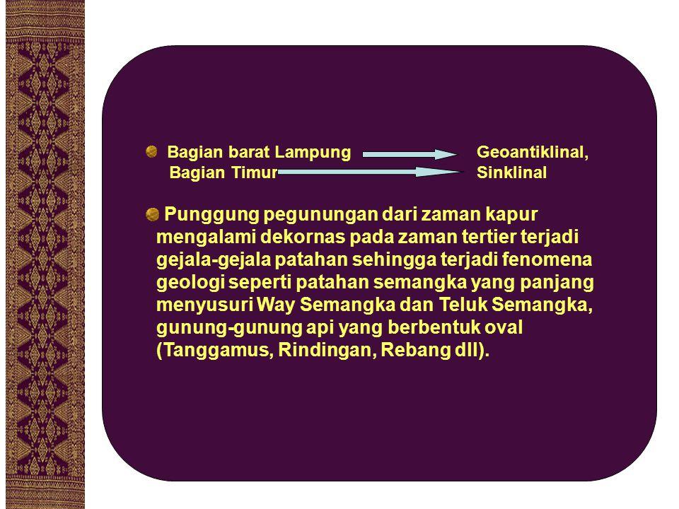 Bagian barat Lampung Geoantiklinal, Bagian Timur Sinklinal Punggung pegunungan dari zaman kapur mengalami dekornas pada zaman tertier terjadi gejala-g