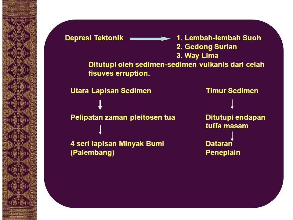 POTENSI PENGGUNAAN LAHAN PENGGUNAAN% Persawahan13,57 Pekarangan10,12 Ladang/Kebun32,34 Perumahan3,22 Lainnya40,75  Sebagian besar lahan yang telah digunakan yaitu sebesar 59,25% diperuntukkan untuk kegiatan yang produktif Sumber: Lampung Dalam Angka 2006 (data diolah)