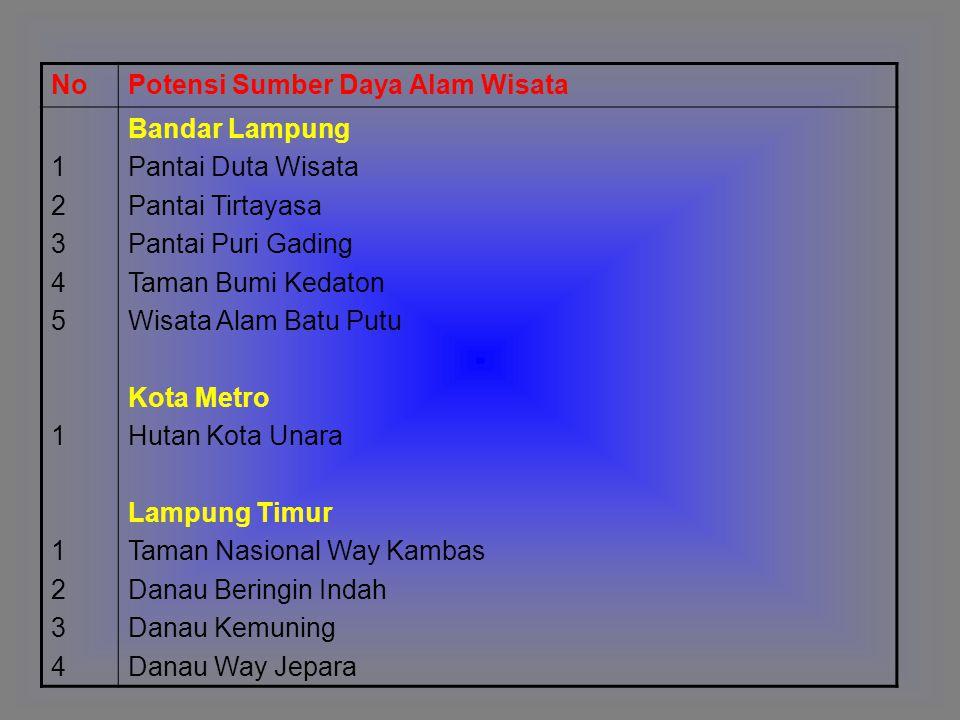 NoPotensi Sumber Daya Alam Wisata 12345112341234511234 Bandar Lampung Pantai Duta Wisata Pantai Tirtayasa Pantai Puri Gading Taman Bumi Kedaton Wisata