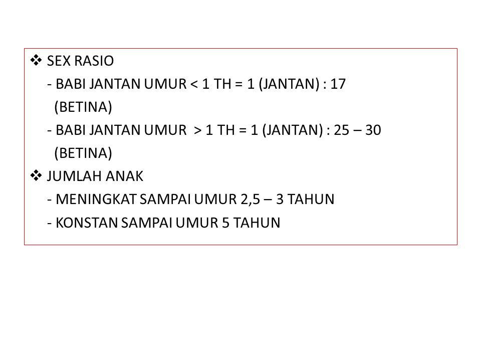  SEX RASIO - BABI JANTAN UMUR < 1 TH = 1 (JANTAN) : 17 (BETINA) - BABI JANTAN UMUR > 1 TH = 1 (JANTAN) : 25 – 30 (BETINA)  JUMLAH ANAK - MENINGKAT S