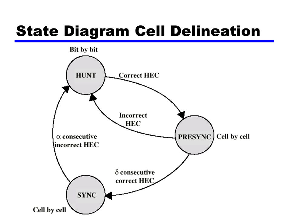 State Diagram Cell Delineation