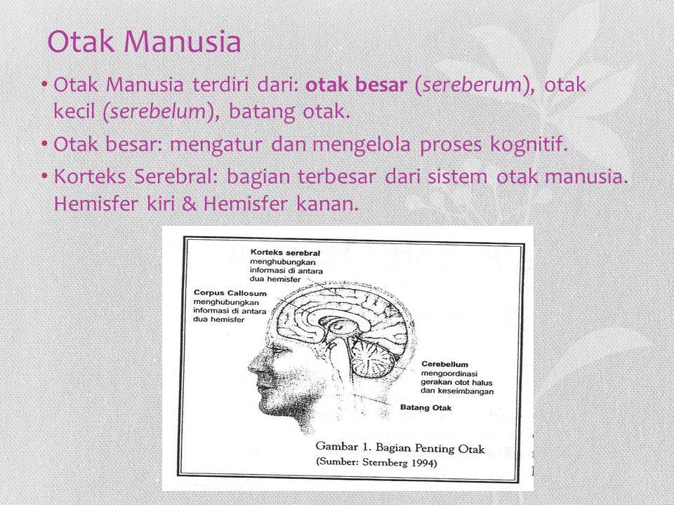 Otak Manusia Otak Manusia terdiri dari: otak besar (sereberum), otak kecil (serebelum), batang otak. Otak besar: mengatur dan mengelola proses kogniti