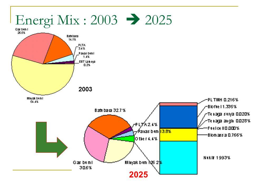 2003 2025 Energi Mix : 2003  2025