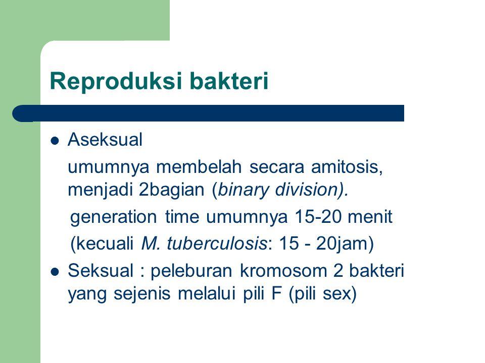 Reproduksi bakteri Aseksual umumnya membelah secara amitosis, menjadi 2bagian (binary division). generation time umumnya 15-20 menit (kecuali M. tuber