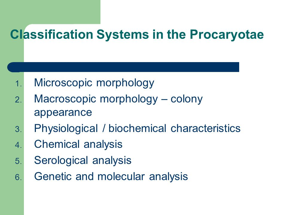 Classification Systems in the Procaryotae 1. Microscopic morphology 2. Macroscopic morphology – colony appearance 3. Physiological / biochemical chara