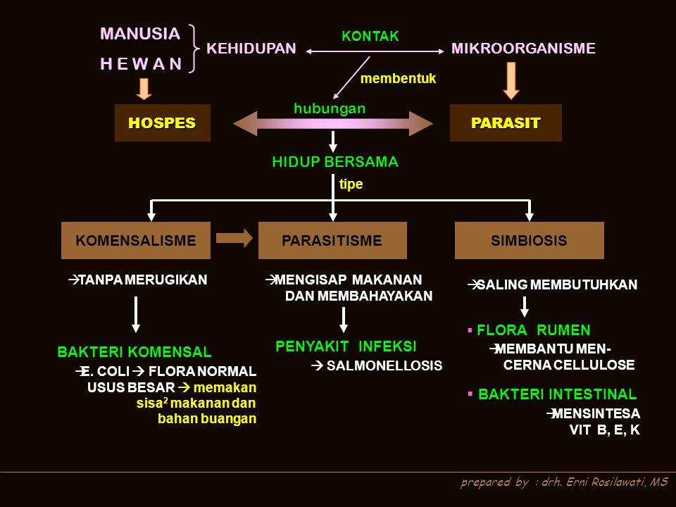 prepared by : drh.Erni Rosilawati, MS MEKANISME FAGOSITOSIS MEKANISME FAGOSITOSIS A.