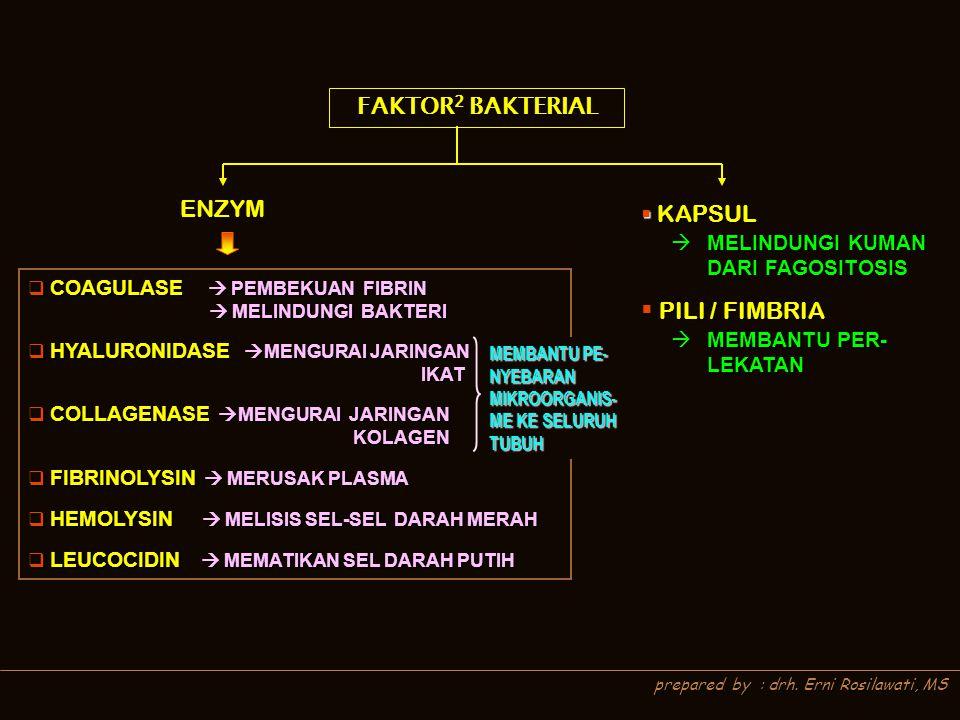 prepared by : drh. Erni Rosilawati, MS FAKTOR 2 BAKTERIAL ENZYM  KAPSUL  PILI / FIMBRIA  MELINDUNGI KUMAN DARI FAGOSITOSIS  COAGULASE  PEMBEKUAN