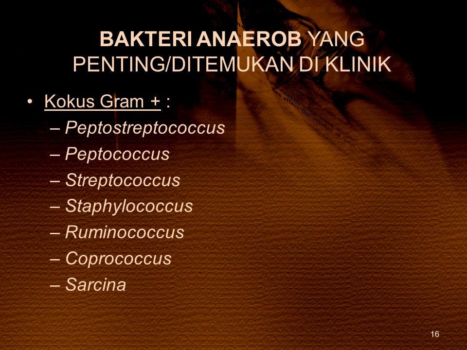 BAKTERI ANAEROB YANG PENTING/DITEMUKAN DI KLINIK Kokus Gram + : –Peptostreptococcus –Peptococcus –Streptococcus –Staphylococcus –Ruminococcus –Coproco