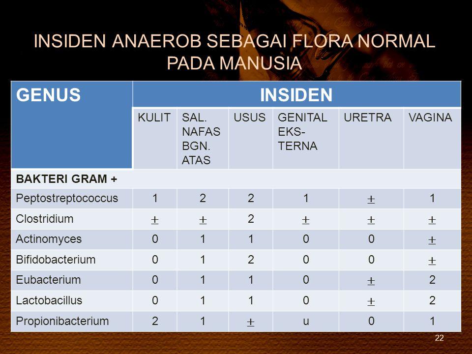 INSIDEN ANAEROB SEBAGAI FLORA NORMAL PADA MANUSIA 22 GENUSINSIDEN KULITSAL. NAFAS BGN. ATAS USUSGENITAL EKS- TERNA URETRAVAGINA BAKTERI GRAM + Peptost